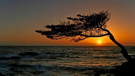 惊人的加州日落
