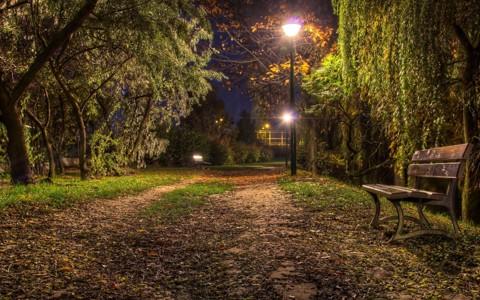 自然夜床壁纸