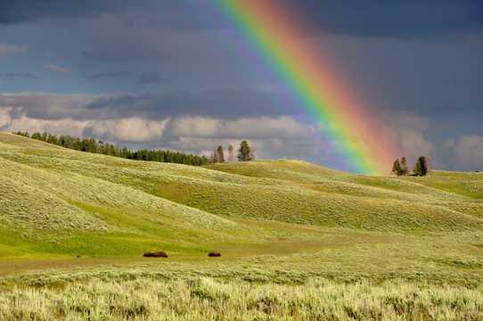 乡村彩虹图片