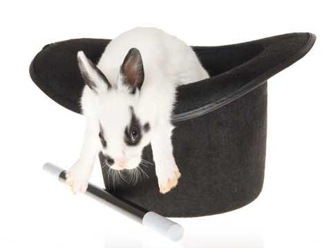 高清魔法小兔图片