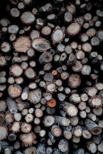 木头堆起来的样子图片