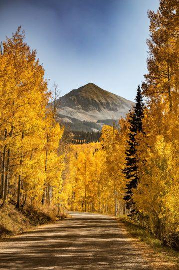 秋天小路景色图片