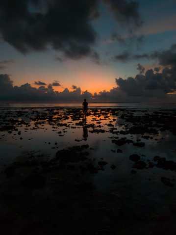 退潮海滨残阳美景图片