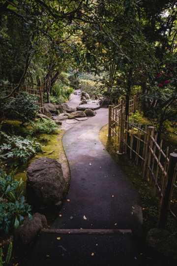 园林走道景色图片