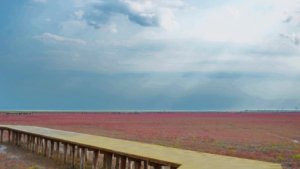 辽宁盘锦红海滩