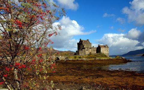 在海岸线的城堡