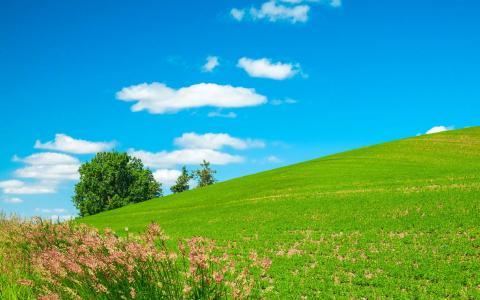 一望无际的大草原美景