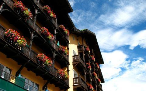 充满鲜花的阳台