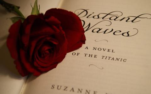 书上的玫瑰