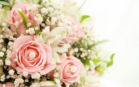 玫瑰和百合花