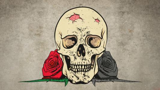 头骨和玫瑰