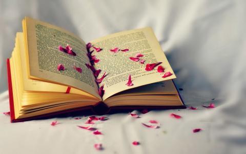 书上的花瓣