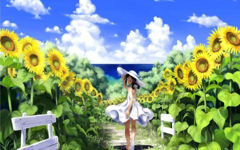 向日葵领域的女孩