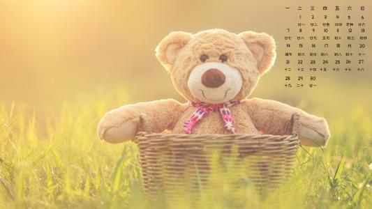 2021年6月毛绒玩具熊静物写真日历