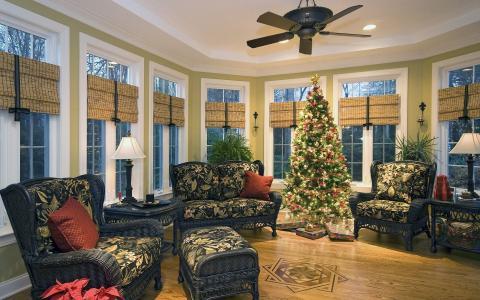在房间里的圣诞树