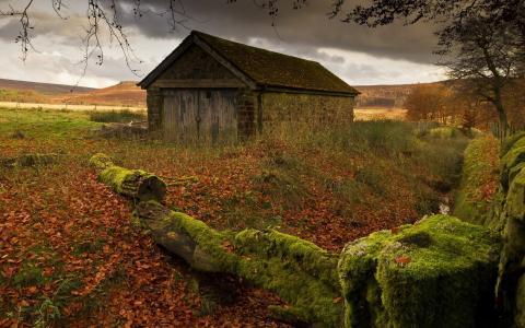 被遗弃的小屋