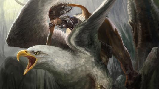老鹰的女战士