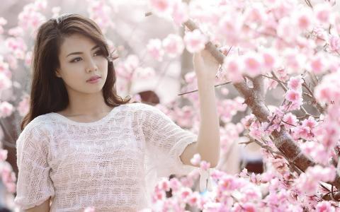 樱花盛开的女人