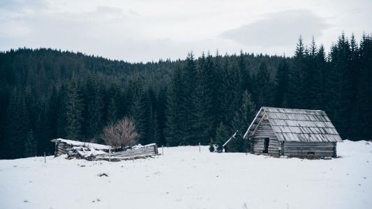 唯美的雪地木屋景象