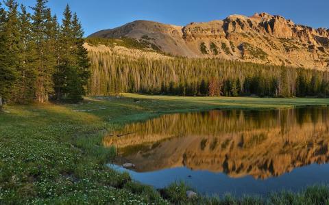 反映在湖的山