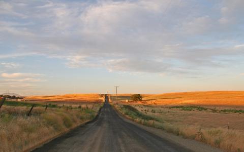 乡下的道路