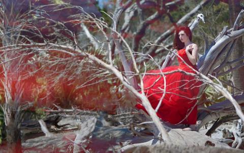 一件红色礼服的妇女