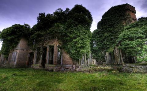 自然接管废墟