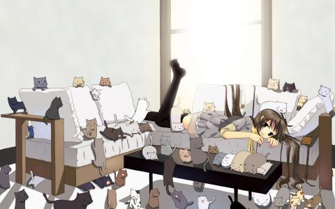 动漫与猫的女孩