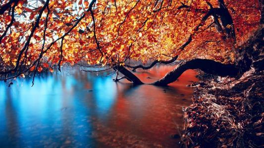 秋天倾斜在河