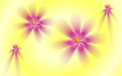 紫色褪色的花朵