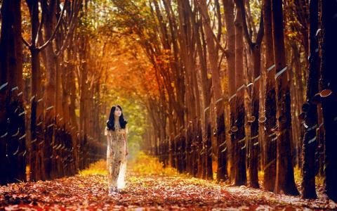 女人走过森林