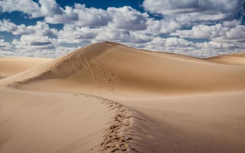 在沙漠中的脚步声