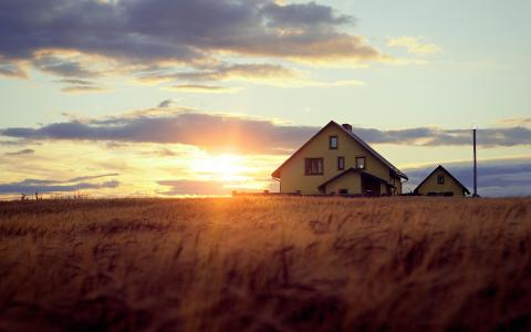 在麦田上的日落