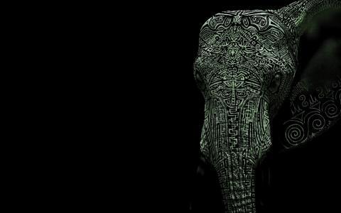 纹身的大象