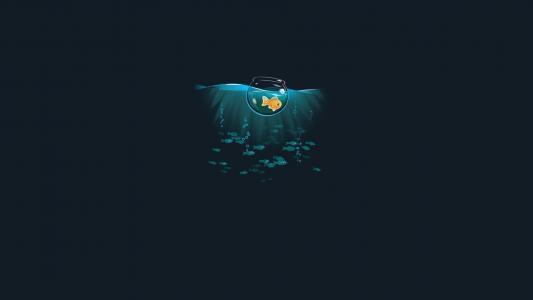 在一个碗里的金鱼在海中