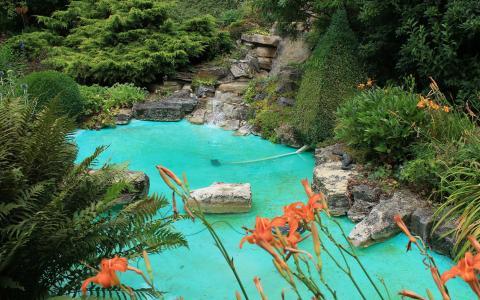 蓝色的池塘在花园里