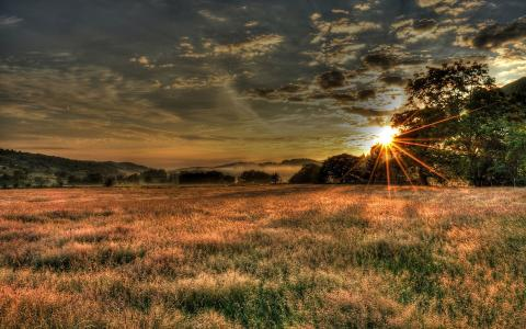 阳光照耀在田野上