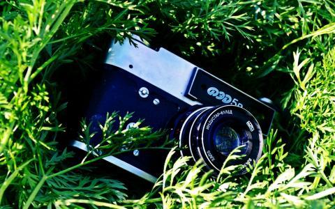 相机在草地上