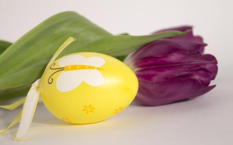 复活节彩蛋和郁金香