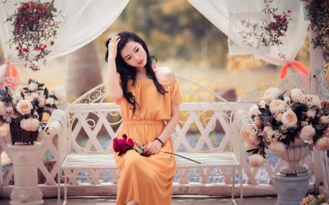 玫瑰在长凳上的女孩