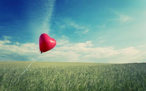 在领域的红色气球