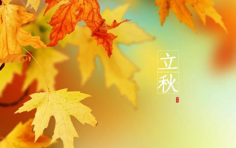 立秋景气图片