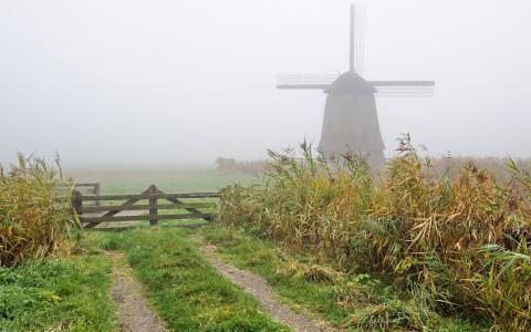 有雾的风车