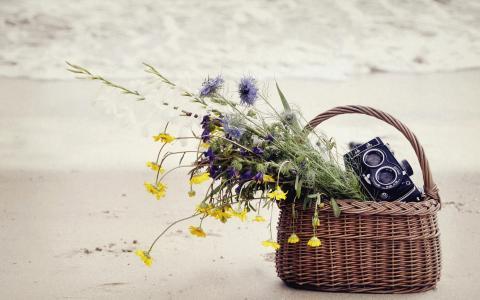鲜花和相机在篮子里