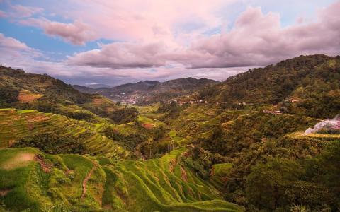 美丽的绿色山谷