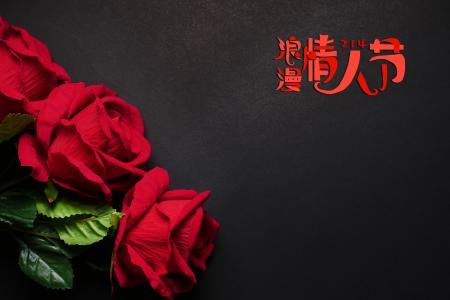 情人节娇艳的玫瑰花