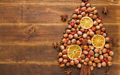 圣诞树由健康的对待