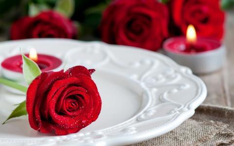 在板上的红玫瑰