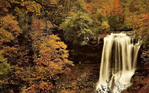 在秋天的森林瀑布