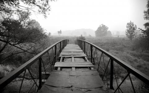 被遗弃的桥梁